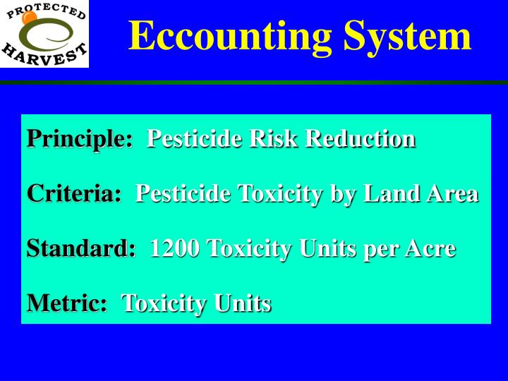 Eccounting System