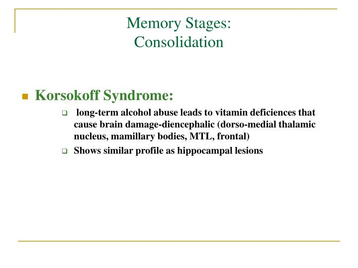 Memory Stages: