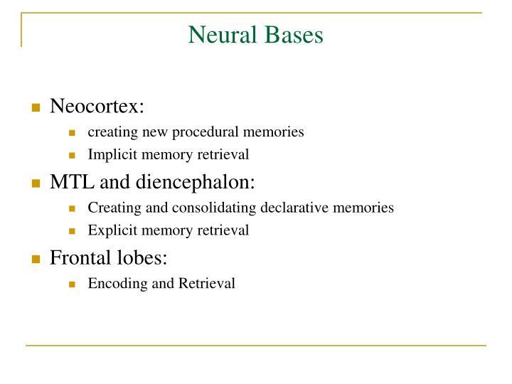 Neural Bases