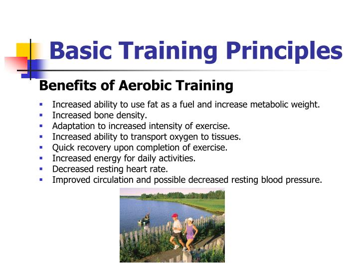 what are the basic principles of exercise