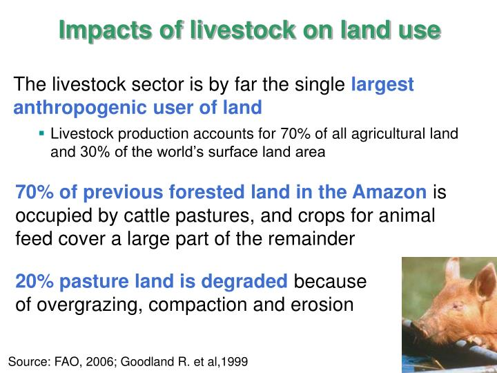 Impacts of livestock on land use
