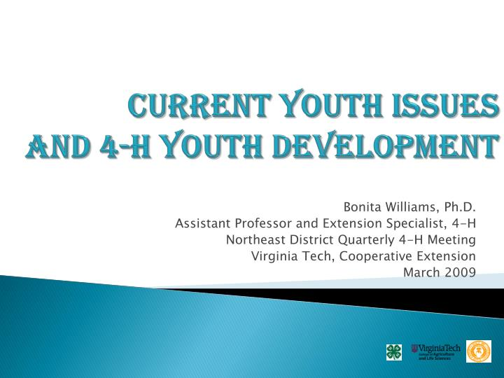 Current youth issues and 4 h youth development