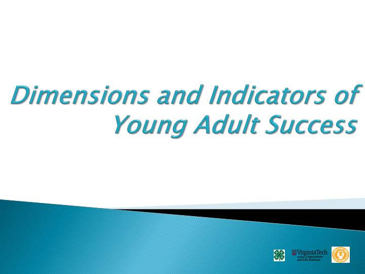 Dimensions and Indicators of Young Adult Success