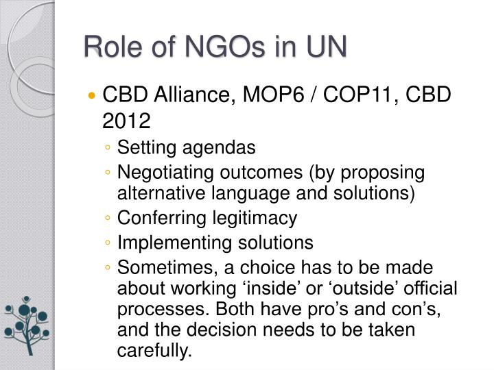 Role of NGOs in UN