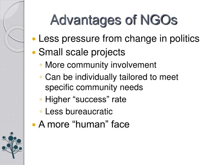 Advantages of NGOs
