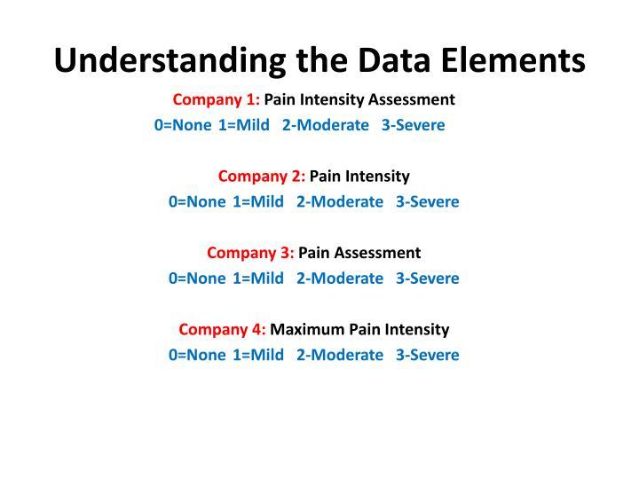 Understanding the Data Elements