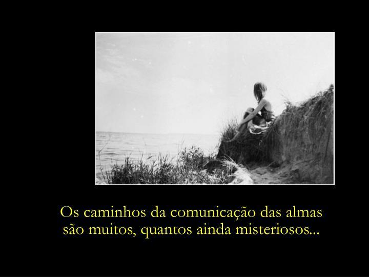 Os caminhos da comunicação das almas