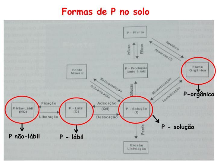 Formas de P no solo