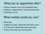 what can an apprentice offer
