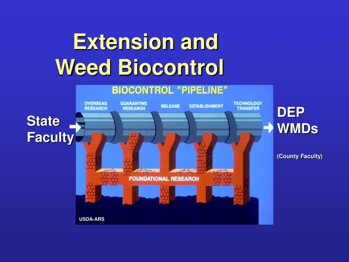 Extension and Weed Biocontrol