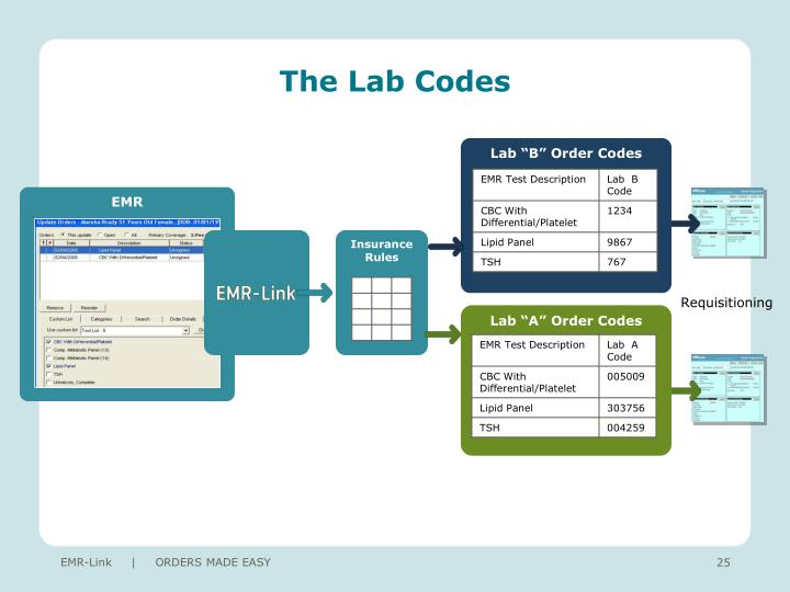 The Lab Codes