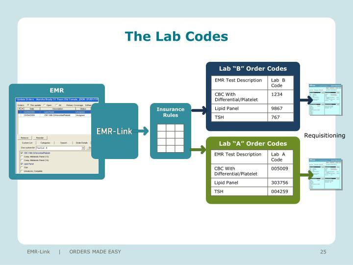 The Lab Codes