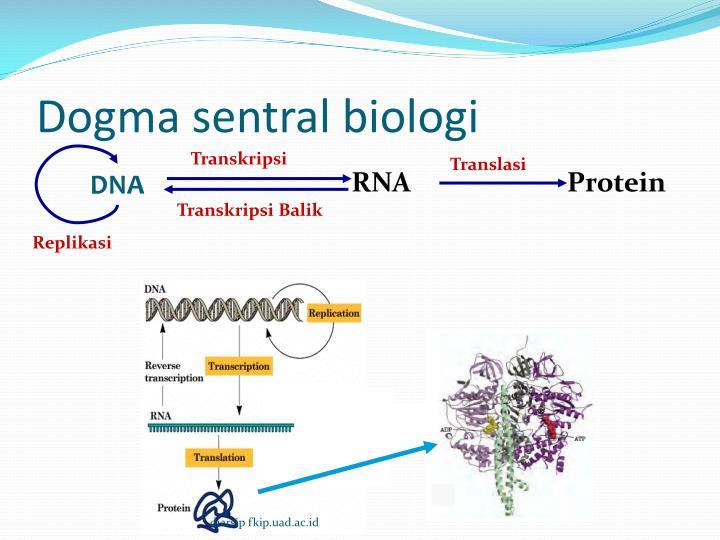 Dogma sentral biologi