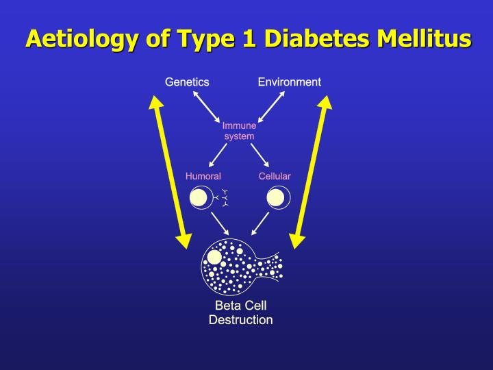 Aetiology of Type 1 Diabetes Mellitus