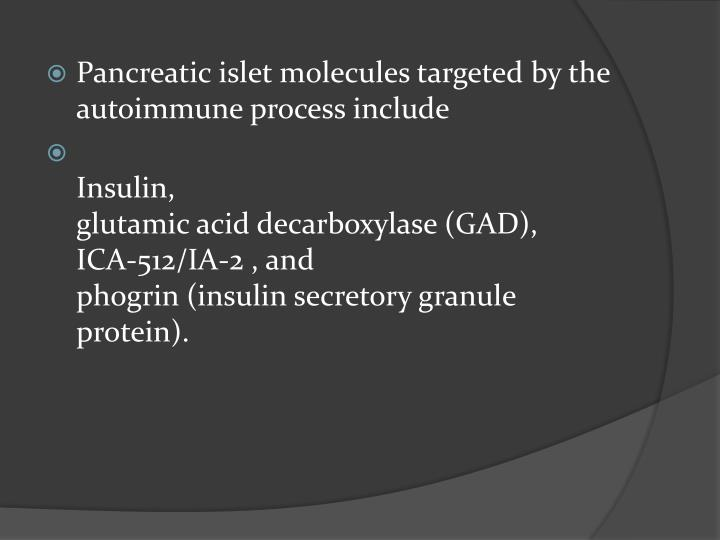 Pancreatic islet molecules targeted by the autoimmune process include