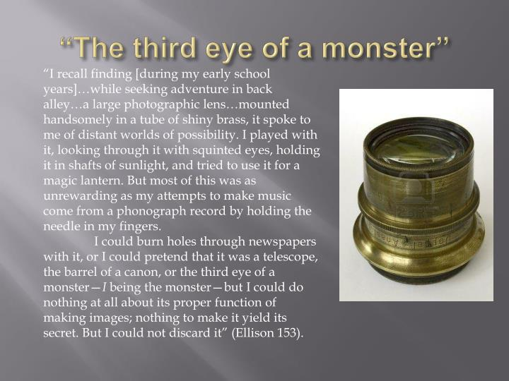 """The third eye of a monster"""