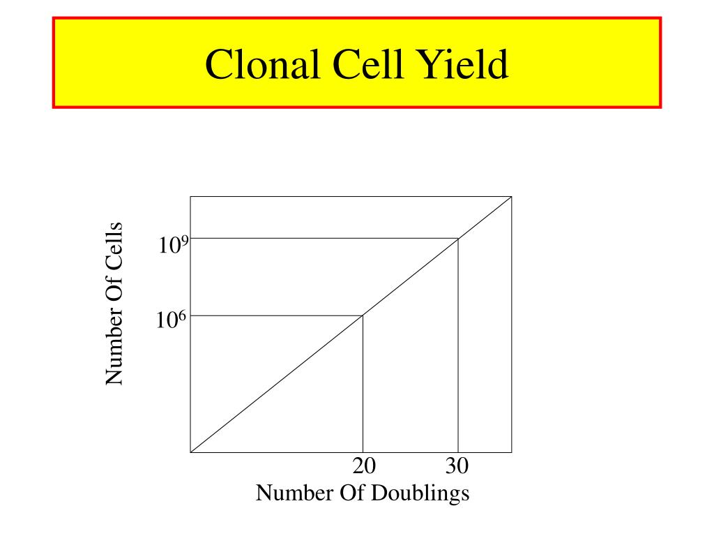 Clonal Cell Yield