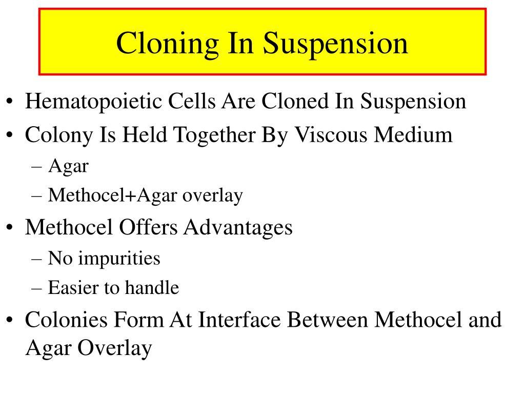 Cloning In Suspension