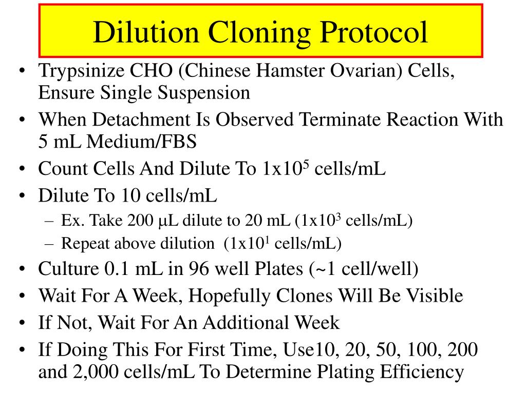 Dilution Cloning Protocol