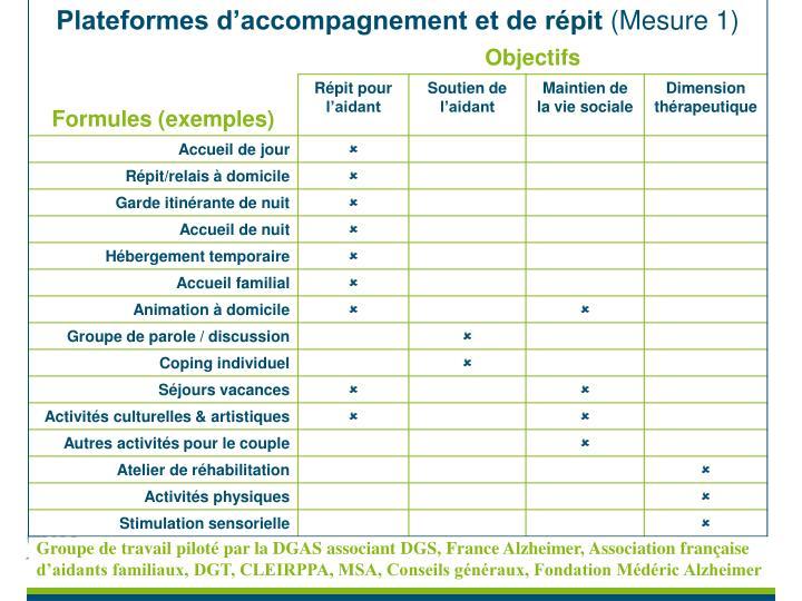 Groupe de travail piloté par la DGAS associant DGS, France Alzheimer, Association française d'aidants familiaux, DGT, CLEIRPPA, MSA, Conseils généraux, Fondation Médéric Alzheimer