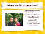where do ells come from