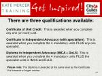 there are three qualifications available