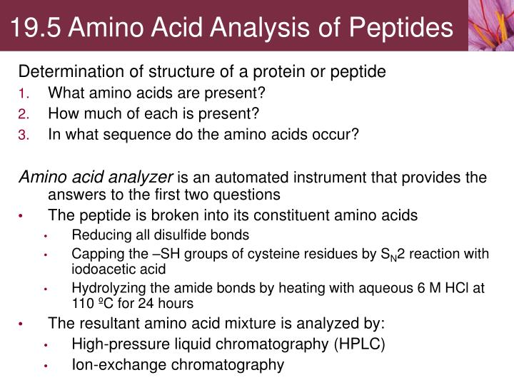 19.5 Amino Acid Analysis of Peptides