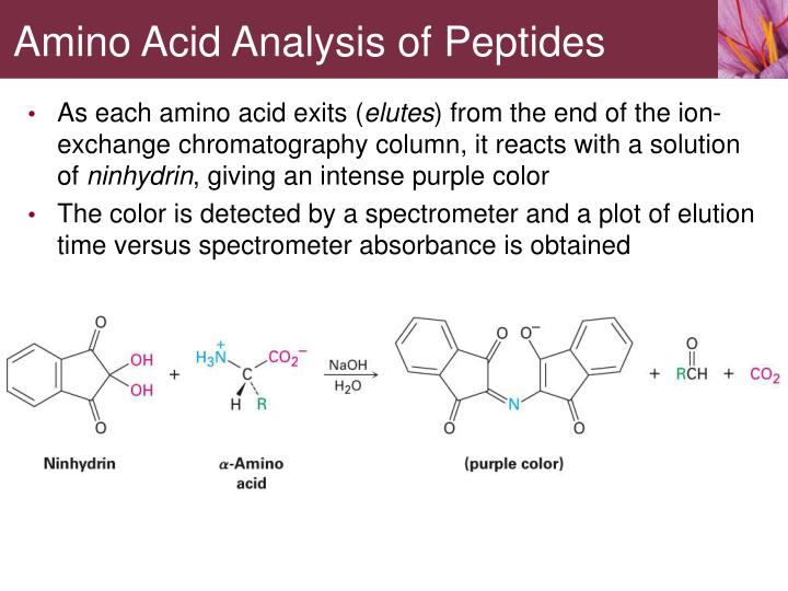 Amino Acid Analysis of Peptides