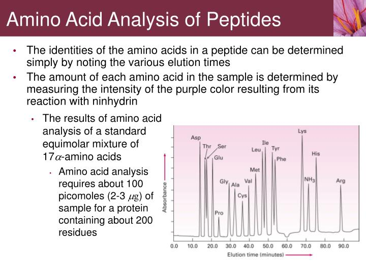 The identities of the amino acids in a peptide can be determined simply by noting the various elution times