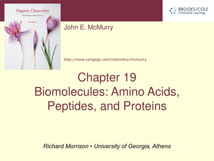 Amino acids peptides and proteins