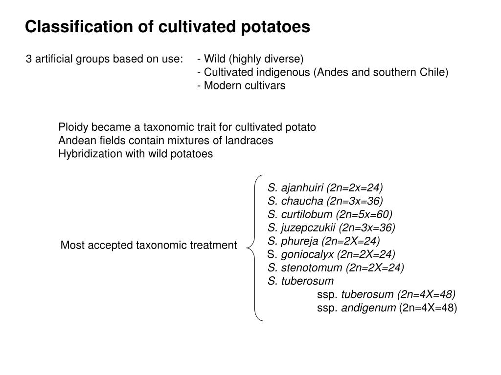 Classification of cultivated potatoes