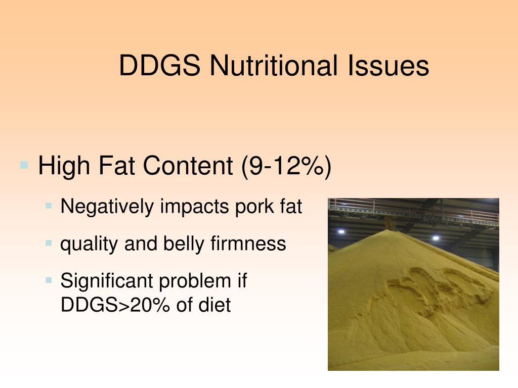 DDGS Nutritional Issues