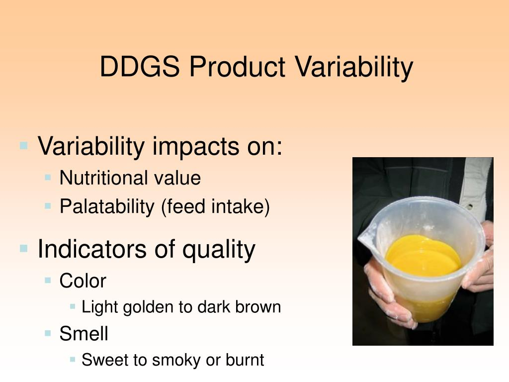 DDGS Product Variability