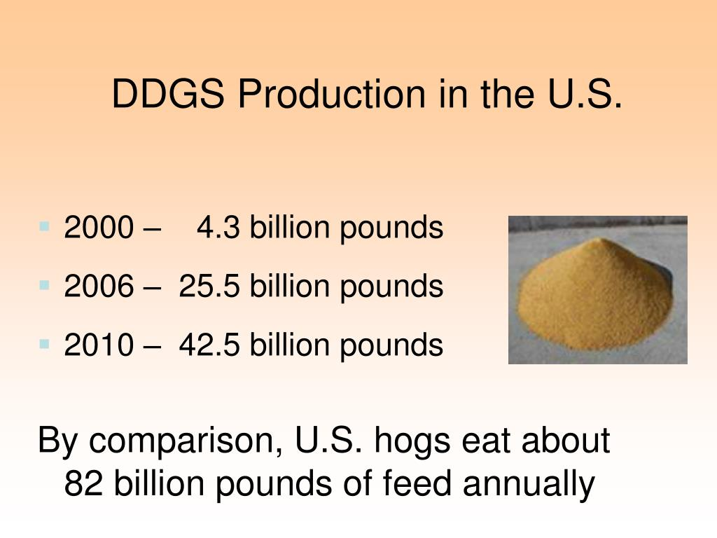 DDGS Production in the U.S.