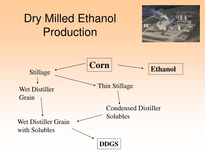 Dry milled ethanol production