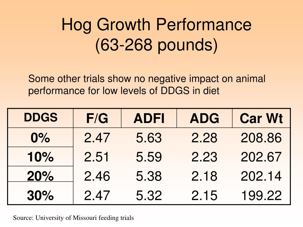 Hog Growth Performance