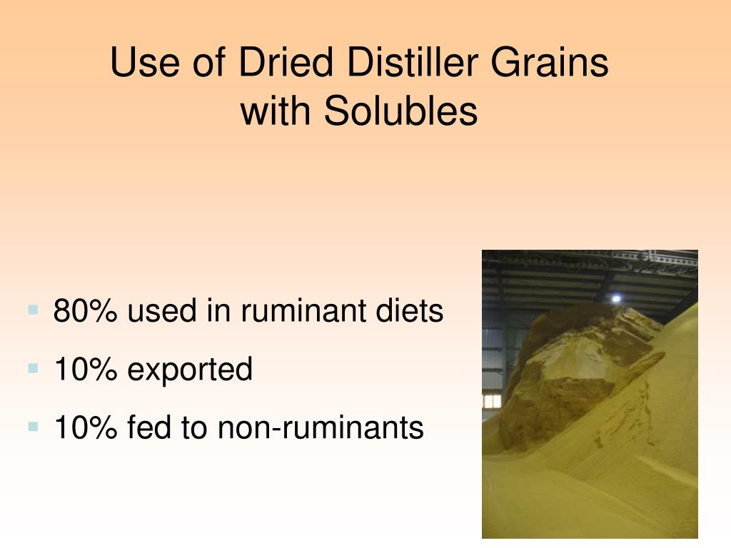 Use of Dried Distiller Grains with Solubles