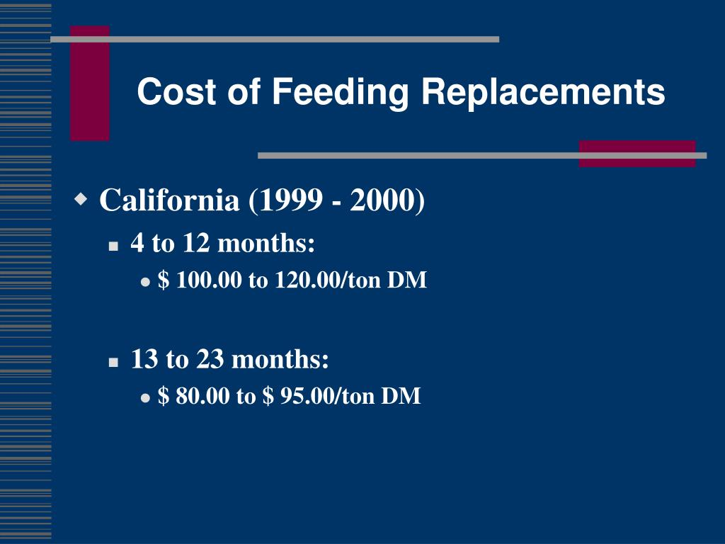 Cost of Feeding Replacements