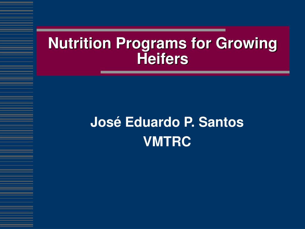 Nutrition Programs for Growing Heifers