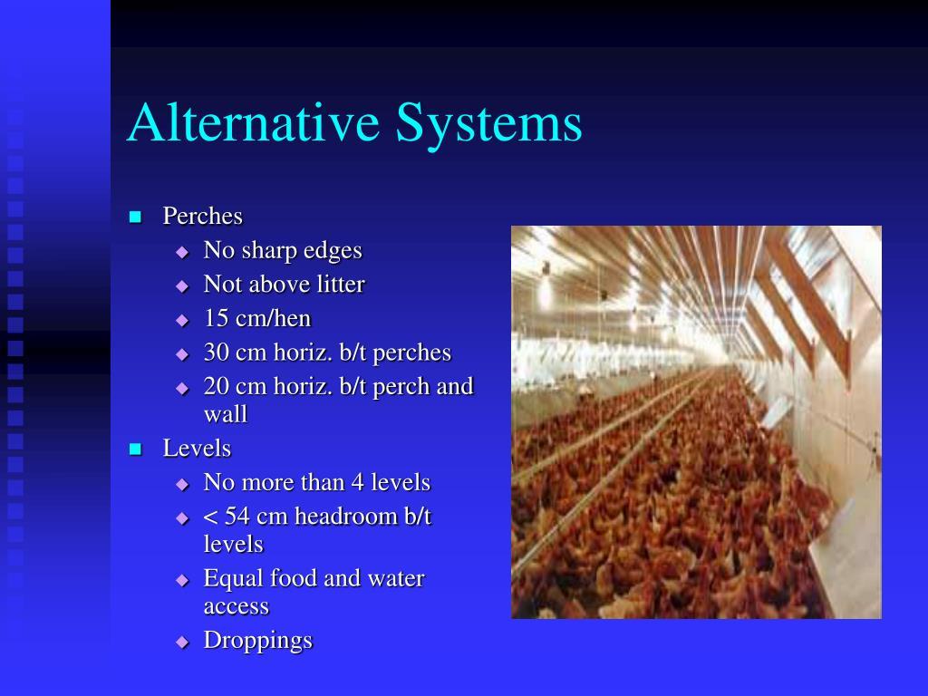 Alternative Systems