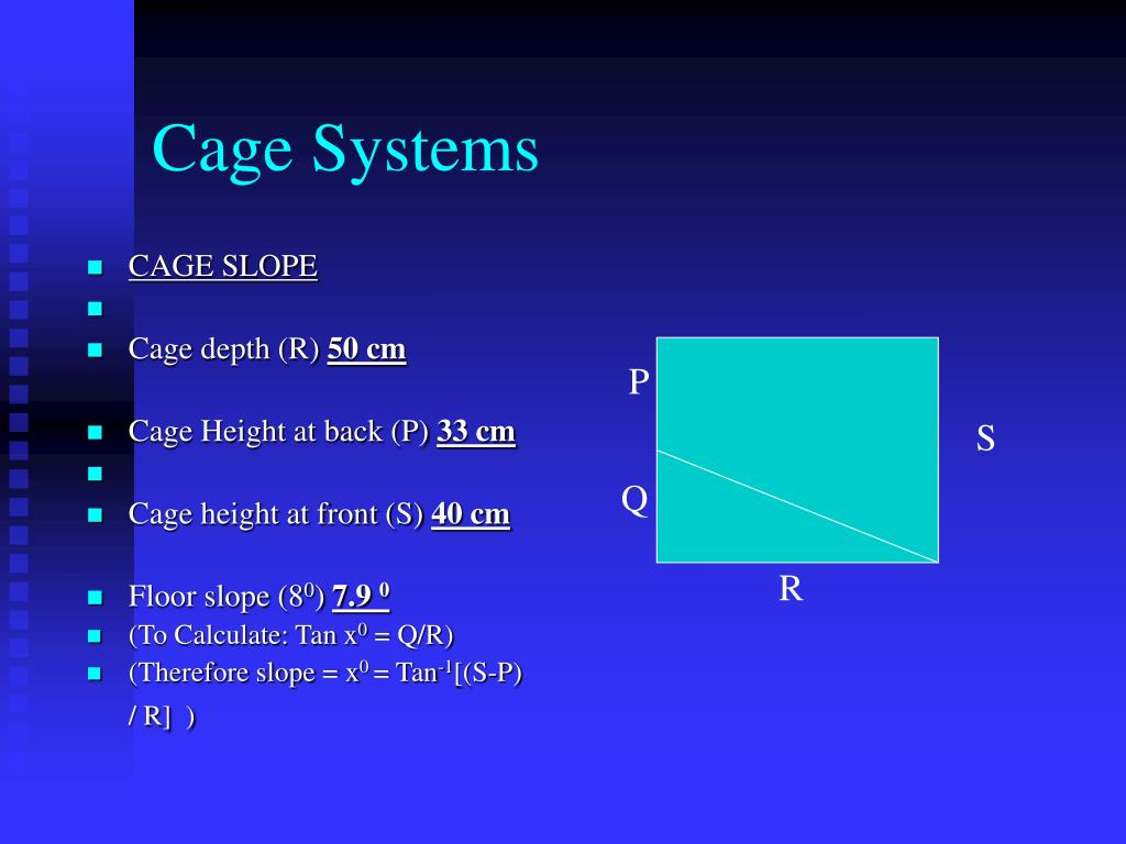 CAGE SLOPE