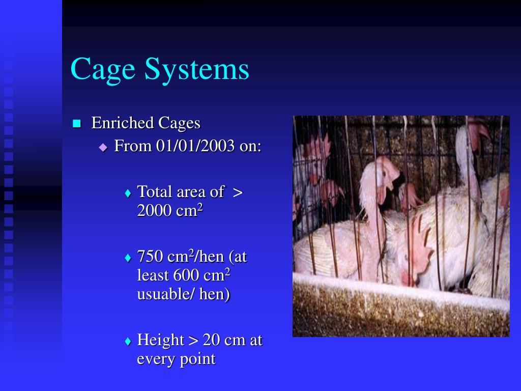 Cage Systems