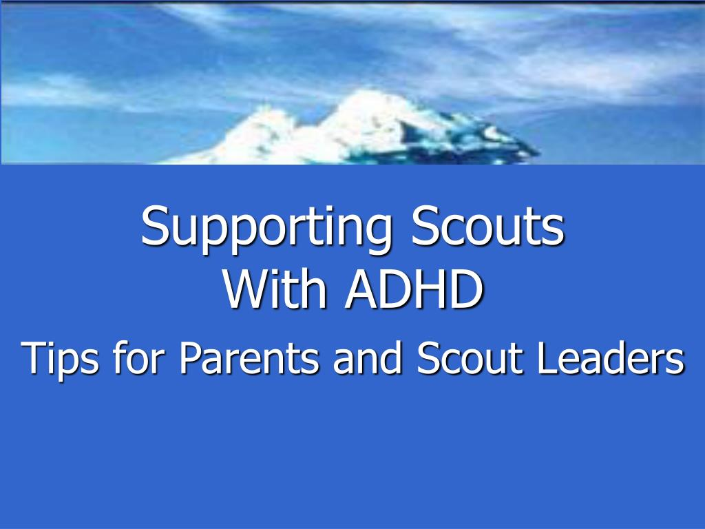 Supporting Scouts