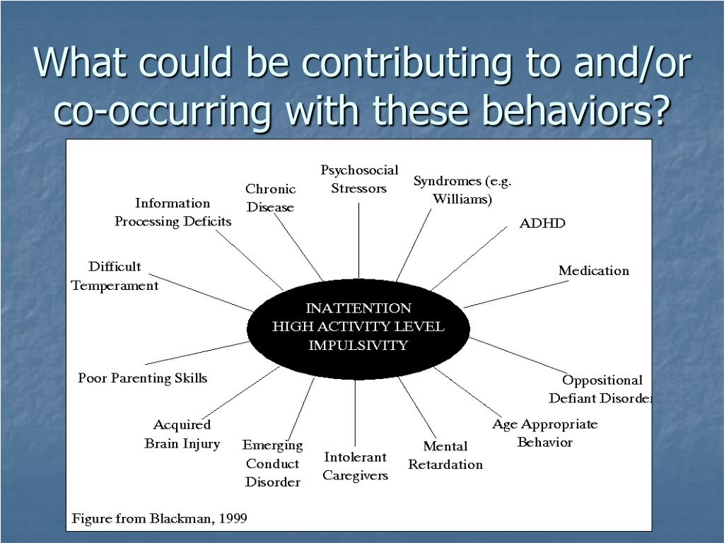 What could be contributing to and/or co-occurring with these behaviors?