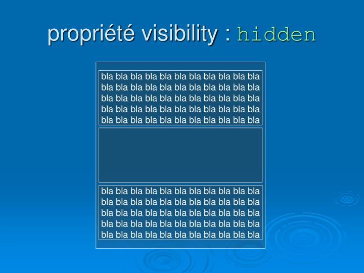 propriété visibility :