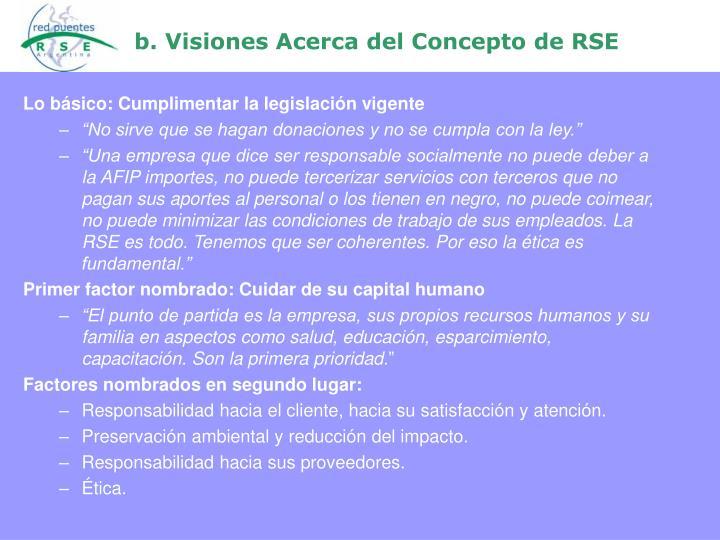 b. Visiones Acerca del Concepto de RSE