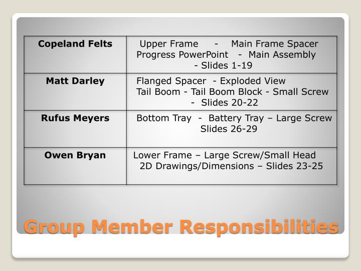 Group Member Responsibilities