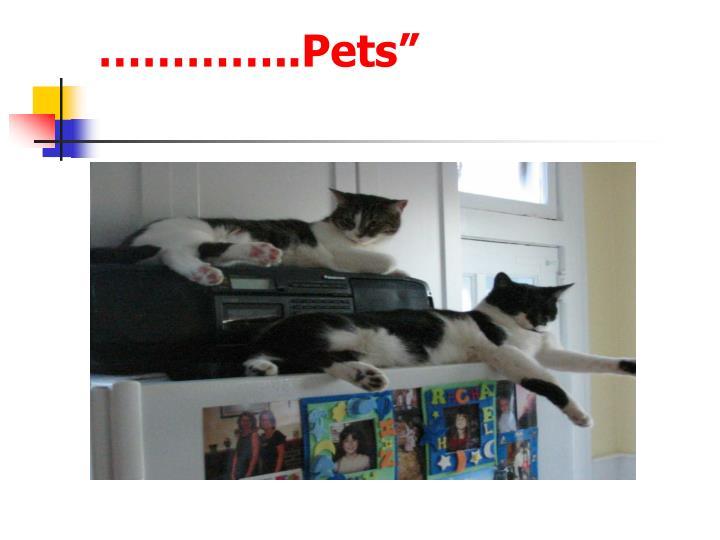 "…………..Pets"""