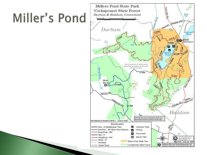 Miller's Pond