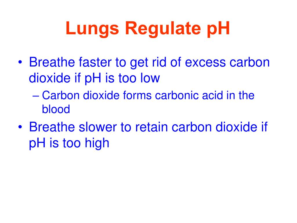 Lungs Regulate pH
